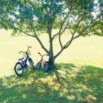 4歳でへんしんバイクはおすすめなの?